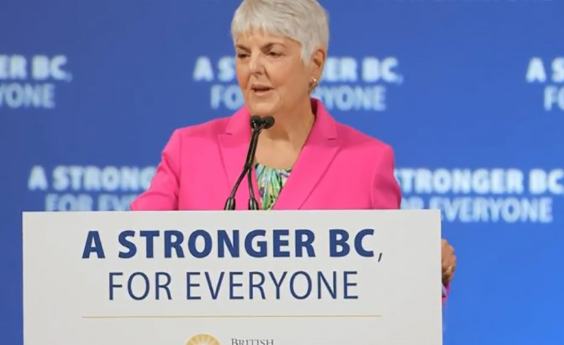 Why BC's Big Capital Budget May Be Ideal in a Pandemic Economy   The Tyee