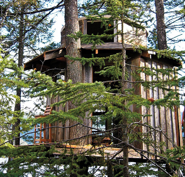 Canim Lake, B.C. treehouse