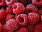 raspberries.png