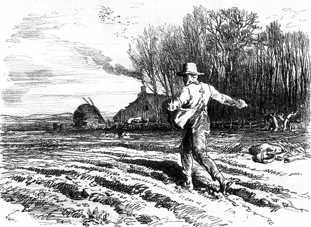 Farm-BW-Illustration.jpg