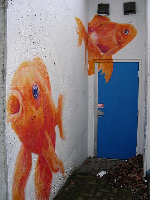 Fishy door