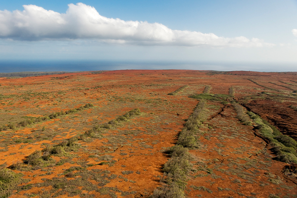 Rewilding Kaho'olawe Island