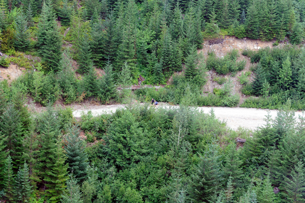 Unaccounted-for hikers after Meager Creek landslide