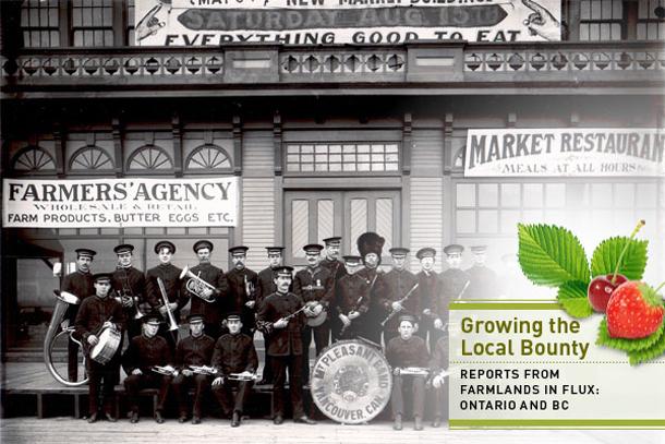Vancouver City Market, 1908