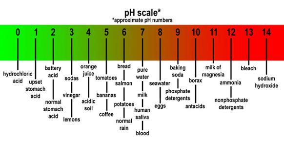 582px version of pH scale