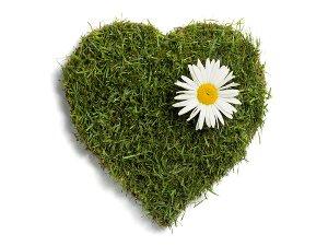 grass-heart.jpg