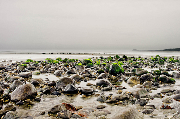Low tide on North Beach near Massett, Haida Gwaii