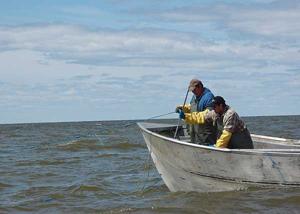 Winnipeg Fishers