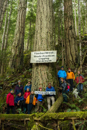 Opponents to TimberWest logging plans