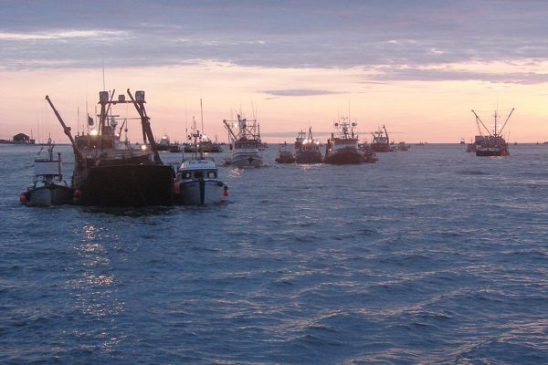 Bc fishermen stuck in middle of dfo legal battle the tyee for Bc fishing license