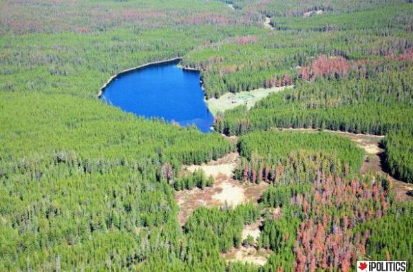 Fish Lake BC