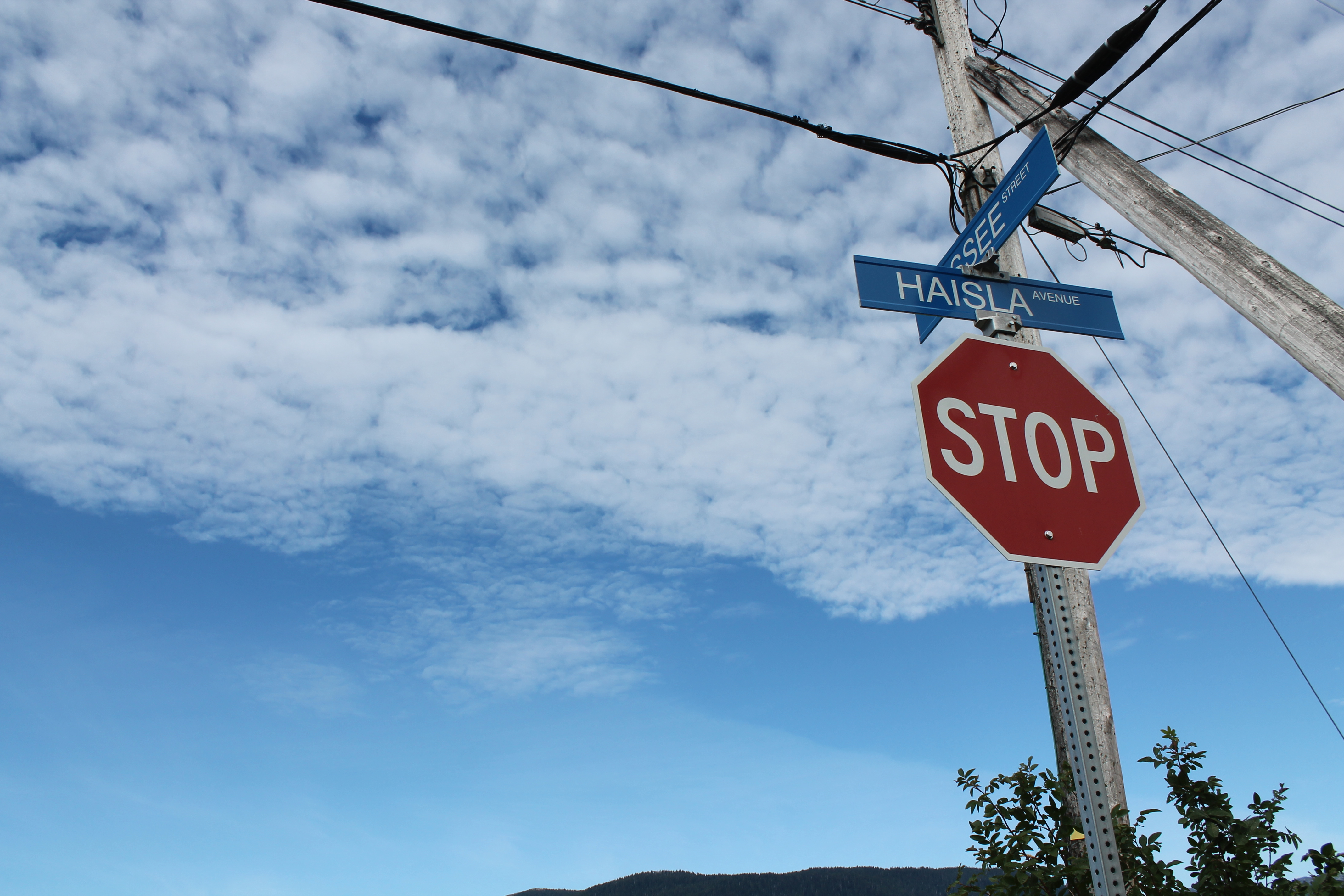 851px version of Haisla Stop Sign