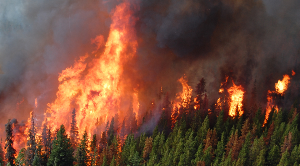 BC wildfire
