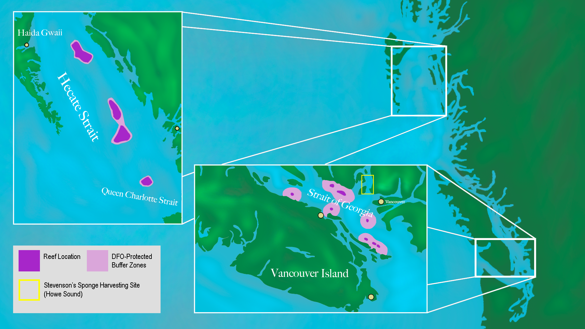 851px version of Sponge-Reef-Map.png