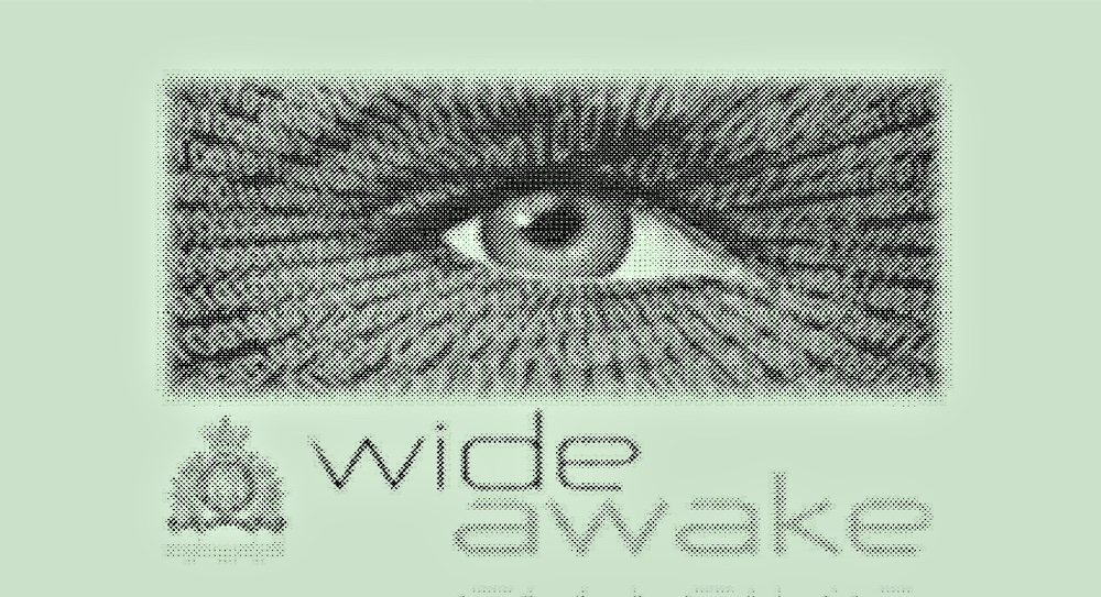 582px version of WidawakeLogo.jpg