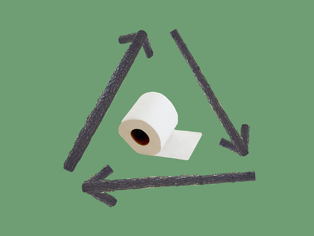 What Happened to All the Green Toilet Paper? (in News)