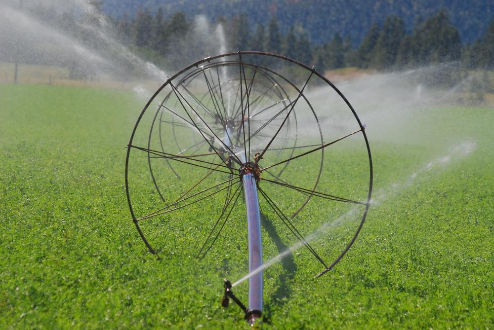 SprinklerAgricultureIndustrialWaterIrrigation.jpeg