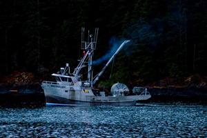 Sockeye salmon photo by Alan Haig-Brown