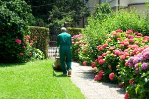 Garden pesticide use