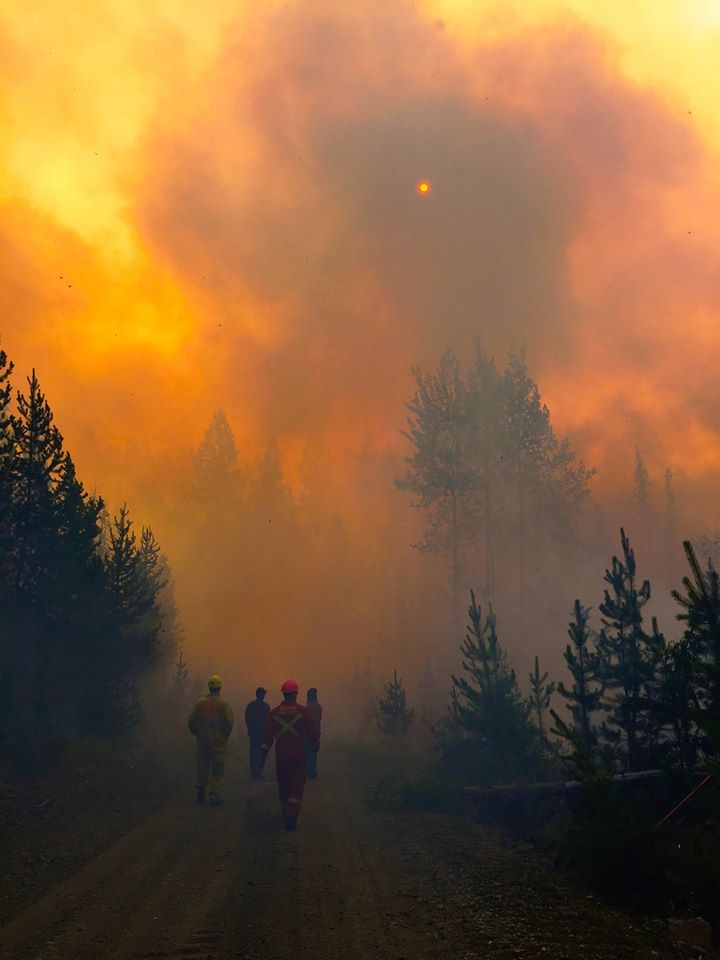 582px version of Firefighters-Forest.jpg