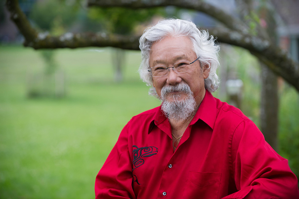 david suzuki s letters to my grandchildren review of children trees and our need for nature the tyee 430
