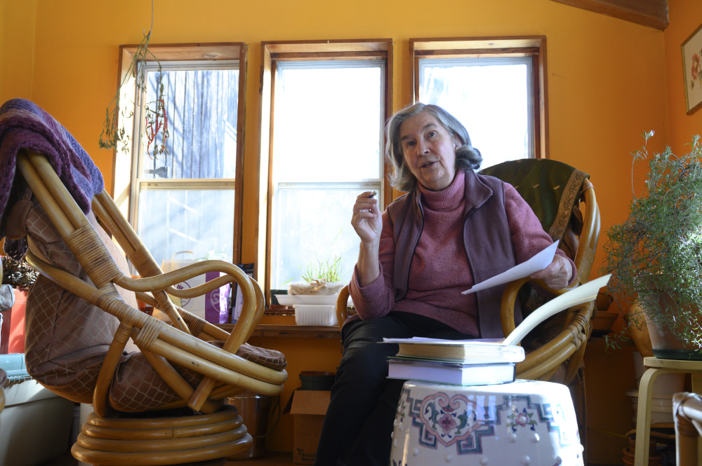 DianaBeresfordKroegerBooks.jpg
