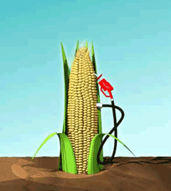 Corn cob with gas pump